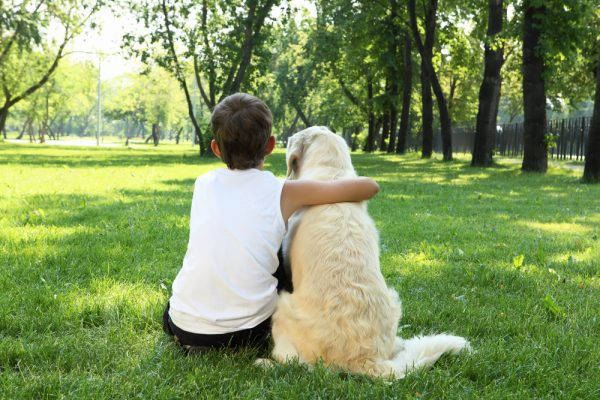 8 Things To Do Before Adopting A Pet | Hero Searches Grapevine