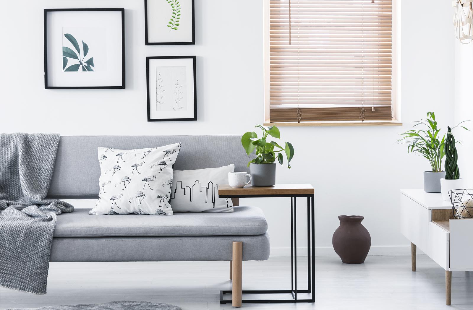 minimalist window couch why go way kuddar met deken echte coxins zdalna domu czyli ochrona smart having kussens laag interior